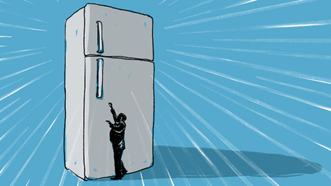 Your Giant American Refrigerator Is Making You Fat And Poor | INTRODUCTION TO THE SOCIAL SCIENCES DIGITAL TEXTBOOK(PSYCHOLOGY-ECONOMICS-SOCIOLOGY):MIKE BUSARELLO | Scoop.it