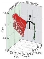 Évaluation rapide des amplitudes actives d'épaule au Microsoft Kinect ® | Kinésithérapie | Scoop.it