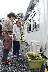 [Eng] Les semis de Goya arrivent trop tard pour les habitants sinistrés à se développer pour combattre la chaleur |  The Mainichi Daily News | Japon : séisme, tsunami & conséquences | Scoop.it