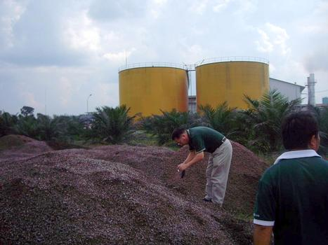 Biomass Wastes from Palm Oil Mills | Furfural and its many By-products | Scoop.it