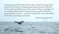 Ocean Lover Takes A Stand  for Whales at IWC | Whales | Scoop.it