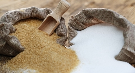 Sugar Not to Blame for Obesity | WELLNESS | Scoop.it