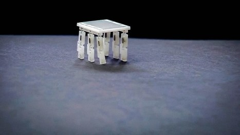 Why I make robots the size of a grain of rice | Tablet opetuksessa | Scoop.it