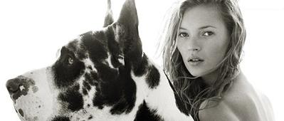 Kate Moss par Herb Ritts | Fashion Pets | Scoop.it