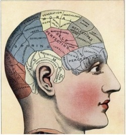 Discovering How to Learn Smarter~ Carol Dweck's Brainology | Edumathingy | Scoop.it
