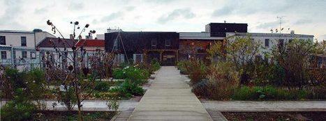 Fragil - Sur les toits et sous les pavés: les jardins partagés | Partager | Scoop.it