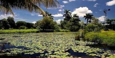 Cuba / Matanzas: Ofrece turismo de naturaleza   Turismos alternativos en América Latina   Scoop.it