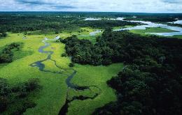 Google StreetView in viaggio sul Rio delle Amazzoni - Tg1 - www.tg1.rai.it | il TecnoSociale | Scoop.it