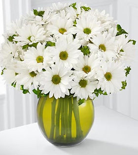 12pcs White Malaysians Mums deliver to your best friend on Anniversary – White_Malaysians_Bouquets#010 | mother's day flower | Scoop.it