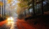 Motorlu Taşıtlar Vergisi Ödemek İçin, Araç Bilgilerinizde- Kimlik Bilgilerinde -Adres Bilgilerinizde  Hata Olması Durumunda Ne Yapmak Gerekir? | ihtiyaç kredisi | Scoop.it