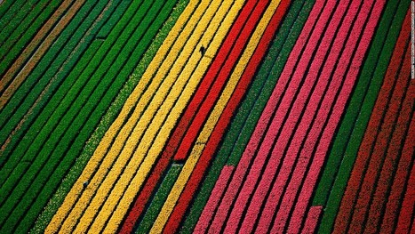 21 awesome aerial photographs show Earth from another angle   Real Estate Plus+ Daily News   Scoop.it