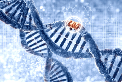 Advancing immunology and primary immunodeficiencies in the genomic era: The importance of being collaborative | immunology | Scoop.it