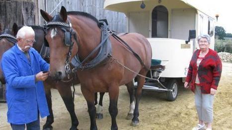 Fête du cheval à Savigné-l'Évêque. En roulotte avec Volga et ... - Ouest-France | Actu Equine en Pays de la Loire | Scoop.it