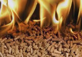La biomasa como fuente energética y de empleo. | GREENENERGYTODAY | Scoop.it