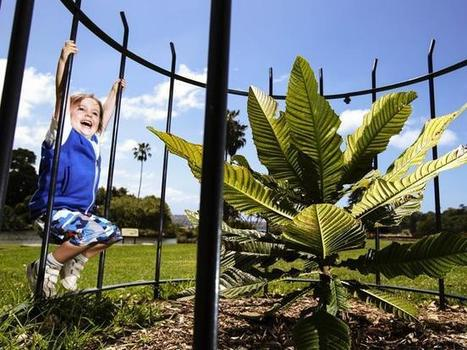 Royal Botanic Gardens master plan gets mixed response from public | Gardening is more than Digging the Dirt | Scoop.it