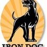 Iron Dog   Dog Treats, Accessories and Training