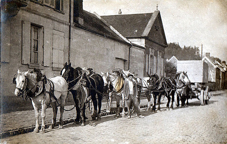 Généalogie autour du Houlme - 1730 Approvisionnement de la ... | Généalogie et histoire, Picardie, Nord-Pas de Calais, Cantal | Scoop.it