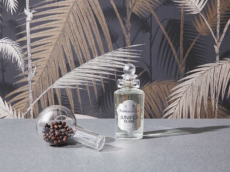 Juniper Sling by Penhaligon's | Artemisia Profumeria | Scoop.it
