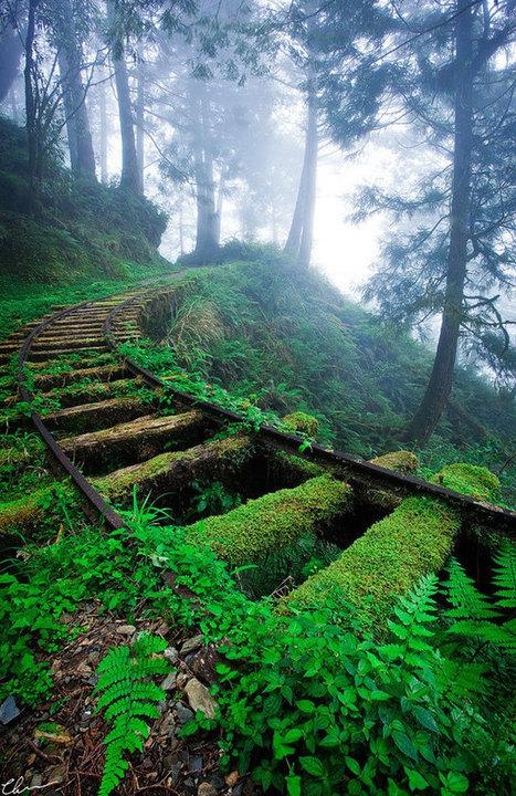 33 impresionantes fotografías de lugares abandonados | Photography - Design Graphic - SocialMedia | Scoop.it
