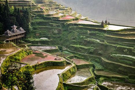 Charlotte Temple : South of the Clouds, Journeys Through Southeast China - L'Œil de la photographie   Carnets d'images   Scoop.it