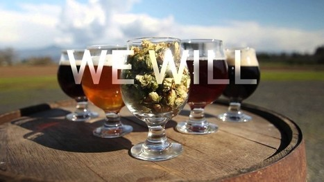 Craft beer industry reacts to Budweiser Super Bowl ad | International Beer News | Scoop.it