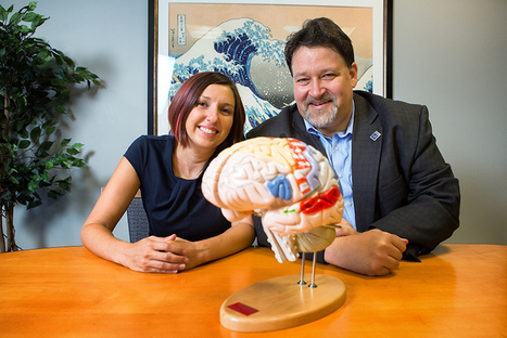 Neuroscientists Find New Brain Network | Amazing Science | Scoop.it
