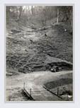 Black Friday - 1939 Victorian Bushfires | black friday | Scoop.it