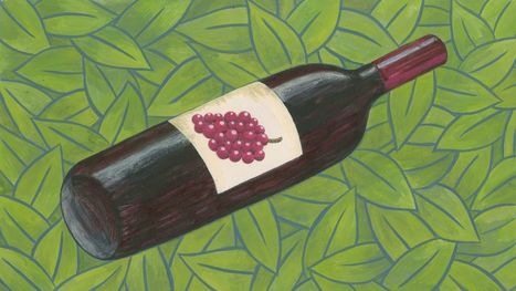 Everything You Need to Know About Vegan #Wine | Vitabella Wine Daily Gossip | Scoop.it