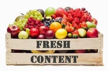 Conseils SEO Référencement : Quelle stratégie de contenu adopter pour son site ? | French Digital News | Scoop.it