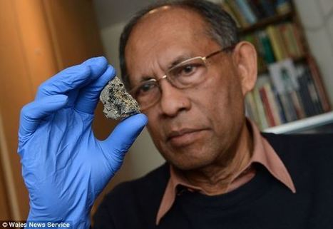 Extraterrestrial Fossils Uncovered Inside Meteorite Found In Sri Lanka | The human scale | Scoop.it