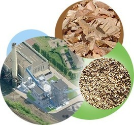 L'énergie biomasse, une énergie renouvelable   Le flux d'Infogreen.lu   Scoop.it