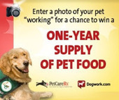 Bunny's Blog: Celebrate the Work Pets Do, Win a One-Year Supply of Pet Food and Support ECAD! | Pet News | Scoop.it