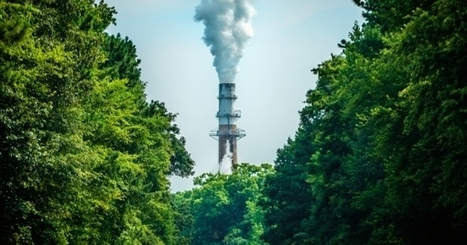 Efficiency, Clean Energy Put Dent in CO2 Emissions | Climate, Energy & Sustainability: Reports & Scientific Publications | Scoop.it