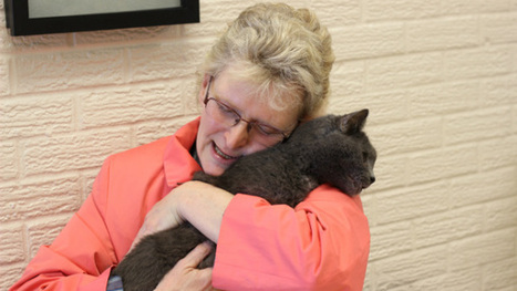 Missing Cat Returns Home After Five Years (VIDEO) | In Your Pet's Best Interest | Scoop.it
