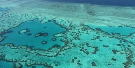 21 mots pour comprendre la COP21 | Model & Inspiration | Scoop.it