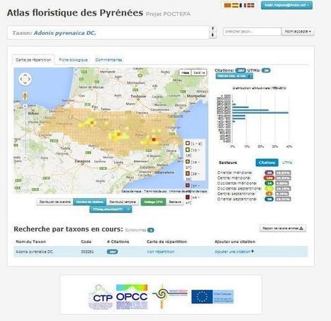 Un Atlas floristique pour les Pyrénées   Vallée d'Aure - Pyrénées   Scoop.it