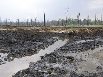 Fresh oil spill pollutes Bayelsa community - Premium Times | Oil Spill | Scoop.it