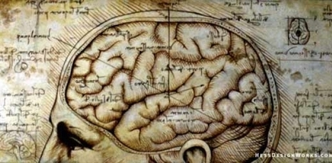 The Myth of the Myth of The Right Brain Difference: And Why It Matters | Genius | Scoop.it