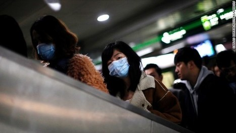 Chinese authorities kill 20,000 birds as avian flu toll rises to 6 | Stefan's News | Scoop.it