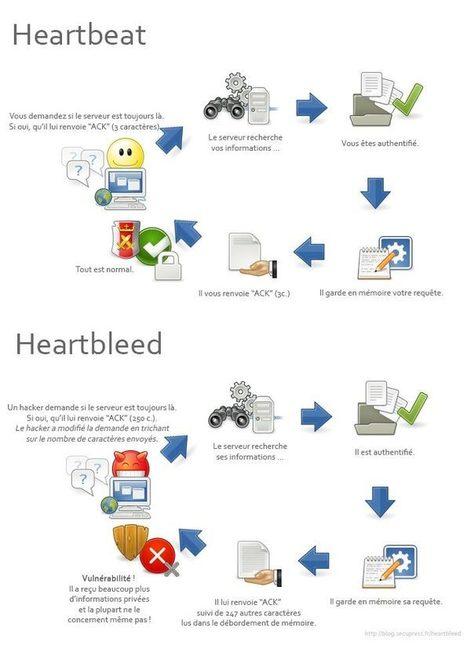 La faille Heartbleed, disséquée. | Réseaux sociaux, sécurité et identité numériques | Scoop.it
