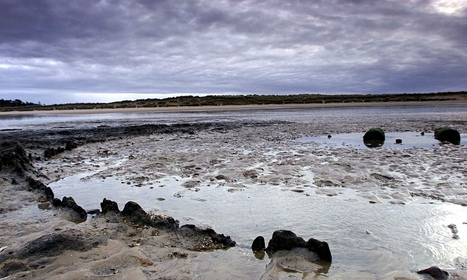 GB : Prehistoric circle dated to same summer as Seahenge neighbour | World Neolithic | Scoop.it