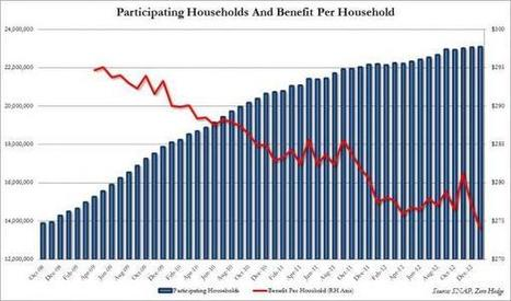 US Households On Foodstamps Hit Record High | Zero Hedge | Geopolitical Powers Shifting | Scoop.it
