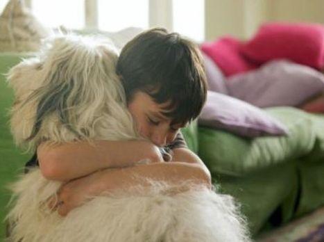 Fotos: Las postales más tiernas del amor entre mascotas y humanos - Publimetro   Animalhouse1   Scoop.it