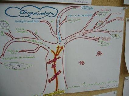 Exposition au CDI : travailler avec la carte mentale - Lycée Ph. DELORME | Une aiguille si…isolée | Scoop.it
