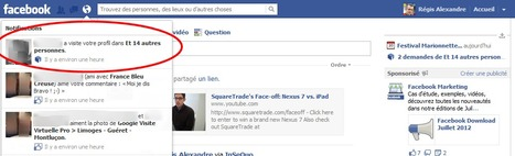 Une application Facebook se fait passer pour Facebook ! | Entrepreneurs du Web | Scoop.it