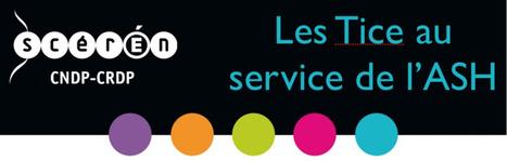 Les Tice au service de l'ASH | dixmois | Scoop.it