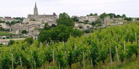 Prise illégale d'intérêt dans le classement des vins de St Emilion ? | Le vin quotidien | Scoop.it