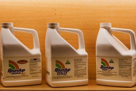 #GMO #advocate says #Monsanto #Roundup is safe to drink — then refuses to drink a glass | Messenger for mother Earth | Scoop.it