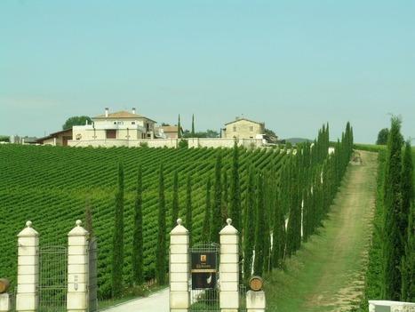 Wine Tasting in Umbria, Italy | Umbria and Tuscany | Scoop.it