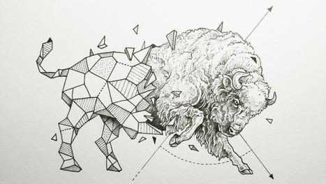 Animals meet geometry in striking illustration series | Geometry Math | Scoop.it